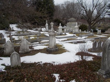 The snow and the stark March landscape lent a perfect atmosphere to my Mount Auburn visit.