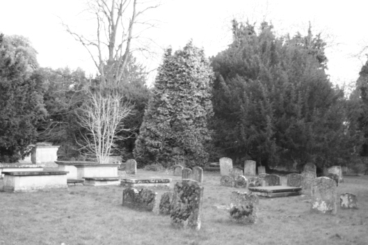 The back part of the cemetery.