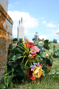 Beauty amidst death. Marysburg Cemetery outside of Madison Lake, Minnesota. Photo by author.
