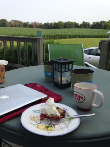 The view from the Becky porch. A computer, a mug of tea, and rhubarb dessert.